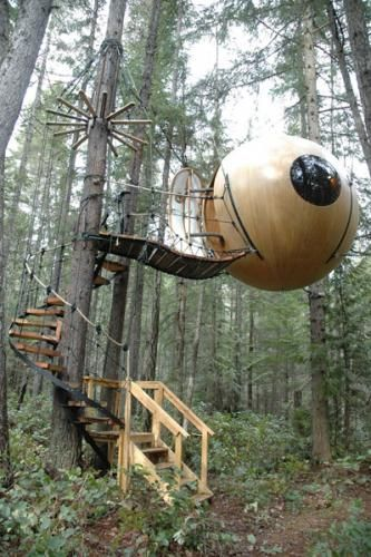 treehouse sphere free spirit tom chudleigh errington forest