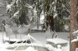 winter wonderland snow trampoline chase river creek cedar tree